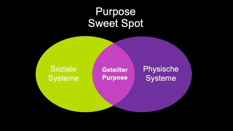 Purpose Sweet Spot als Schnittmenge aus Organisationsmotivation und Individueller Motivation